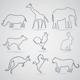 A set of contours, silhouettes of animals rhinoceros, giraffe, e. Lephant, dog, rooster or chicken, a hare or a rabbit, kangaroo, horse, tiger or panther Stock Photo