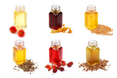 Set of cooking oils isolated on white background royalty free stock photos