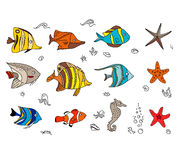 Set with coral fishes. Royalty Free Stock Photos