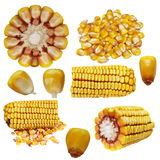 Set corn isolated on white Stock Photo