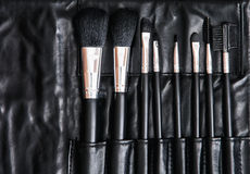 Set of cosmetic brushes in black leather bag, skin care Stock Images