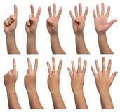Set of counting hands isolated on white Royalty Free Stock Photo