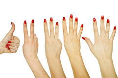 Set of counting woman hands 1 to 5. Isolated on white background Royalty Free Stock Image