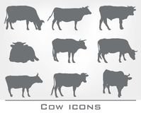 Set of cow icons Royalty Free Stock Images