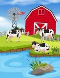 Set of cows on farm. Illustration stock illustration