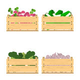 Set of crates with veggies Royalty Free Stock Photography