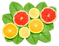 Set of cross citrus fruits on green leaf Stock Photos