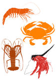 Set of 4 Crustacean illustrations Royalty Free Stock Photography