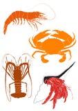 Set 4 Crustacean ilustraci Fotografia Royalty Free