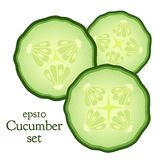 Set of cucumber and slices. Made in flat style, vegetable, food illustration. Stock Image