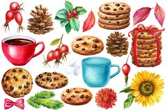Set of cups, flowers, red berries, cones and cookies with chocolate, watercolor illustration, sweet clipart
