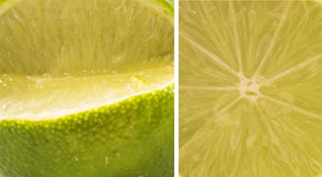 Set of cut limes - lime texture Stock Image