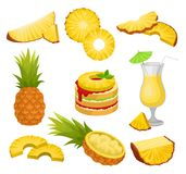 Flat vector set of cut and whole pineapples, alcohol drink and dessert. Juicy tropical fruit. Natural and healthy food. Set of cut and whole pineapples, alcohol royalty free illustration
