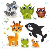 Set of cute animals isolated on white background. fauna of the world icon set. Vector illustration isolated on white Stock Image