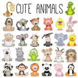 Set of Cute Animals. On a white background Royalty Free Stock Photo