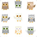 Set of cute. Background on isolated background owls Royalty Free Stock Images