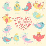 Set of cute birds, cartoon style Stock Photos
