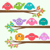 Set of cute birds with different emotions on blooming branch tre Royalty Free Stock Images