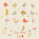 Set of cute birds Stock Images