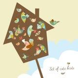 Set of cute birds in vector. Vector set of cute birds. Cartoon collection. Funny little bird family Vector Illustration
