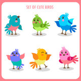 Set Of Cute Birds In Vector. Colorful Birds Vector Collection. Cute Birds Talking. Stock Photos