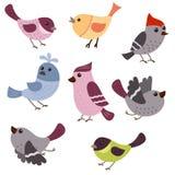 Set of cute birds Royalty Free Stock Image