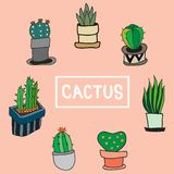Set of cute cactus and the other plants in pot vector illustration