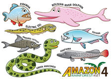 Set of Cute cartoon Animals and birds in the Amazon areas of Sou. Th America isolated on white background. piranha, bolivian river dolphin, electric eel, payara Royalty Free Stock Images