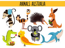 Set of Cute cartoon Animals and birds of Australia and its ostrovov. Kangaroo, possum, numbat, the Koala bear, EMU, parrot, alliga Royalty Free Stock Photos