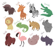 Set of cute cartoon animals. Funny savannah Royalty Free Stock Photos