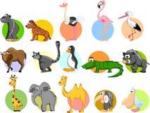 Set of cute cartoon animals,vector Stock Photos