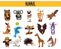 Set of Cute cartoon Animals mammals living in different parts of the world forests, seas and tropical jungles .Koala, lemur, monke Royalty Free Stock Images