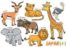Set of Cute cartoon Animals and in the safari areas Royalty Free Stock Image