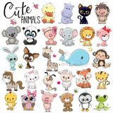Set of Cute Cartoon Animals. On a white background Royalty Free Stock Photo