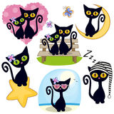 Set of Cute Cartoon Cat. Set of Cute Cartoon Black Cat on a white background royalty free illustration