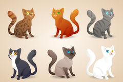 Set of cute cartoon cats with different colored. Fur and type of coat, breeds. Isolated. Vector illustration Royalty Free Stock Images