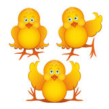 Set of cute cartoon chickens. Chicken set. Funny yellow chickens in different poses Royalty Free Stock Images