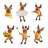 Set of cute cartoon Christmas reindeer characters. Set of cute funny Christmas reindeer portraits - flute, empty board, selfie, present box, cartoon vector vector illustration