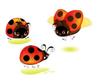 A set of cute cartoon ladybugs Stock Photos