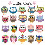 Set of Cute Cartoon Owls Royalty Free Stock Images