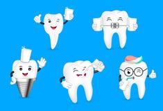 Set of cute cartoon tooth drinking milk. Stock Image