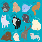 Set of cute cartoon winter north animal icon Royalty Free Stock Photography