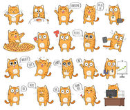 Set of cute cat character with different emotions. Isolated on white background royalty free illustration