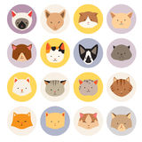 Set of cute cats flat icons, vector flat illustrations Stock Photo