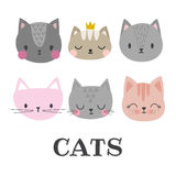 Set of cute cats. Funny doodle animals. Kittens in cartoon style Stock Photography
