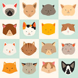 Set of cute cats icons, vector flat illustrations. Cat breeds, pattern, card, game graphics Stock Image
