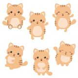 Set of cute cats. Vector set of cute cats on white background. Cats made in cartoon style Stock Photography