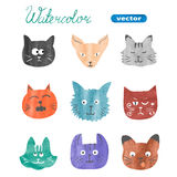 Set of cute cats. Watercolor collection of cats heads Royalty Free Stock Image