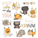 Set of cute cats in yoga asana postures royalty free stock image