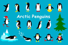 Set of cute Christmas character - penguin. Vector. Collection of cartoon penguin on a blue background royalty free illustration